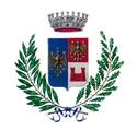 comune besozzo logo
