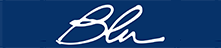 Blu Service logo
