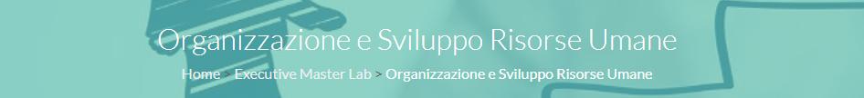 Organizzazione e sviluppo RU Gema